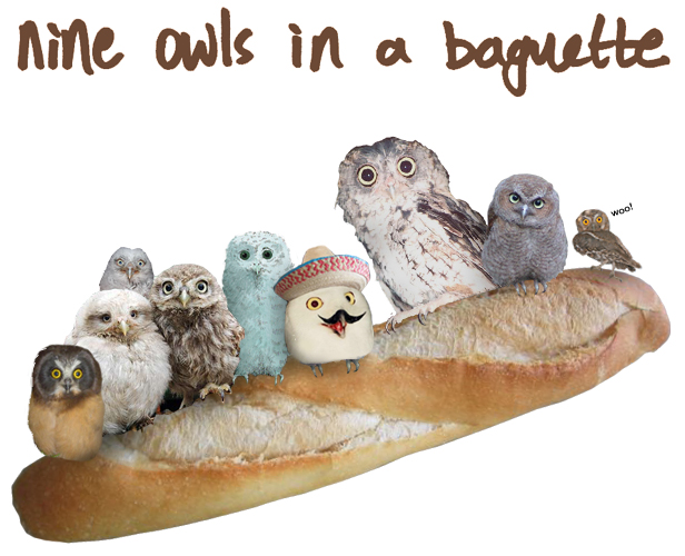 Nine Owls In A Baguette A Side Project Of Naked With Horses